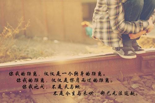 对不起我爱你-插画篇_落英缤纷001
